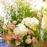 アレンジメント 25000円(税別)~ 仕入状況により使用花材は異なります